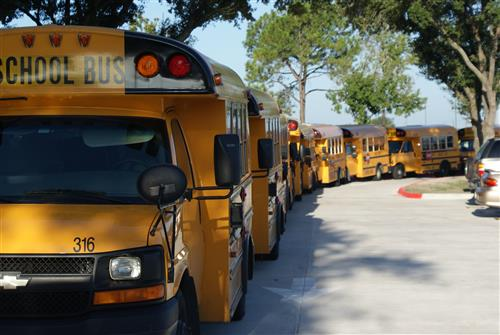 Special Education Buses in lineup waiting to pick up students