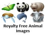 Animal Images