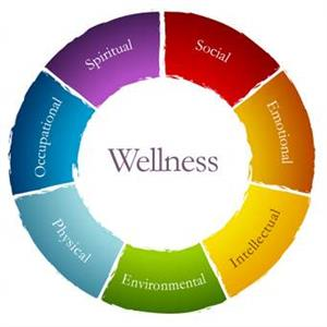 Optimal Wellness Wheel