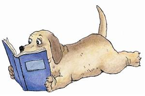 hound dog reading a book