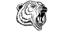 Graphic of Hastings High School's Bear mascot